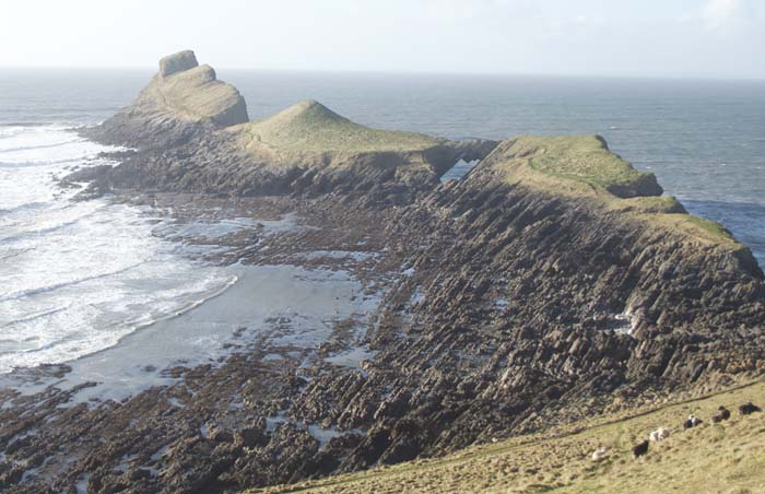 worms-head