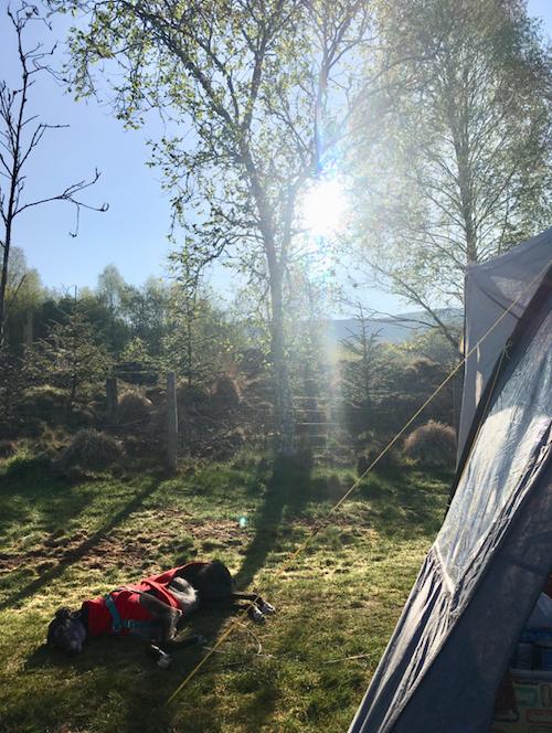rhandirmwyn-camping