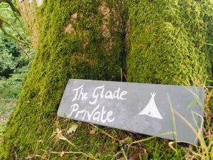 glade-camping