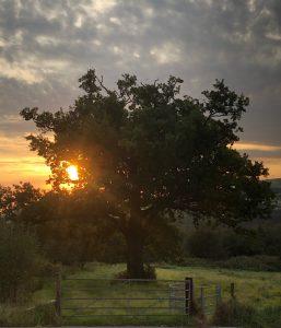 september-sunrise