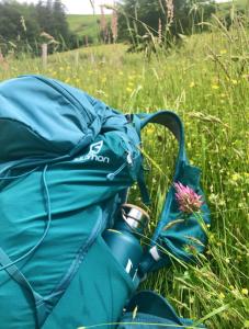 salomon-backpack